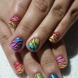 Rainbow Zebra Shellac Nails